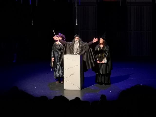 Muzikal Harry Potter in Ognjeni kelih